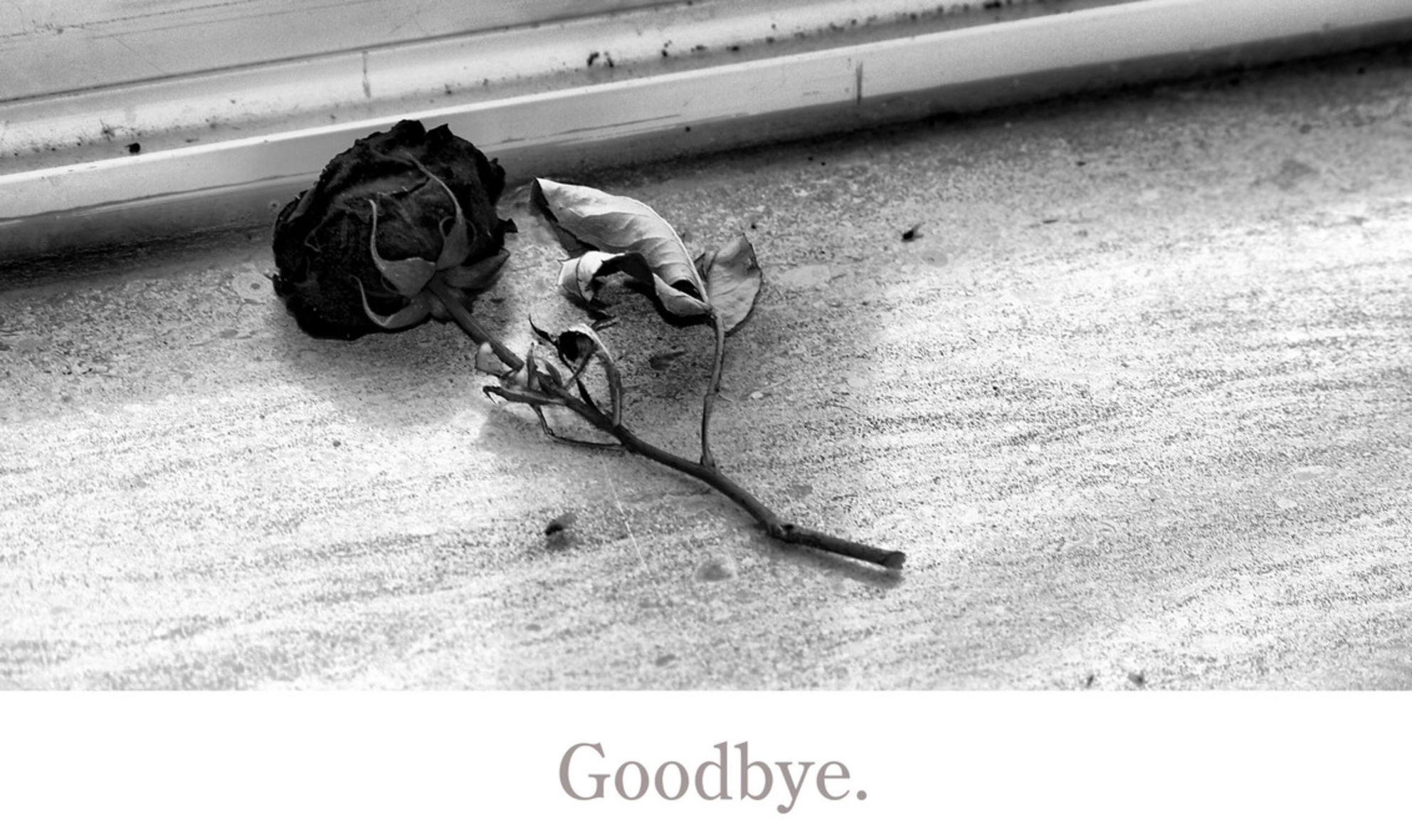 goodbye. - abandoned - foto door golddust76 op 26-02-2011 - deze foto bevat: roos, verlaten - Deze foto mag gebruikt worden in een Zoom.nl publicatie