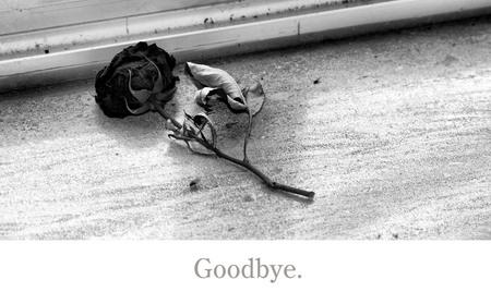 goodbye. - abandoned - foto door golddust76 op 26-02-2011 - deze foto bevat: roos, verlaten