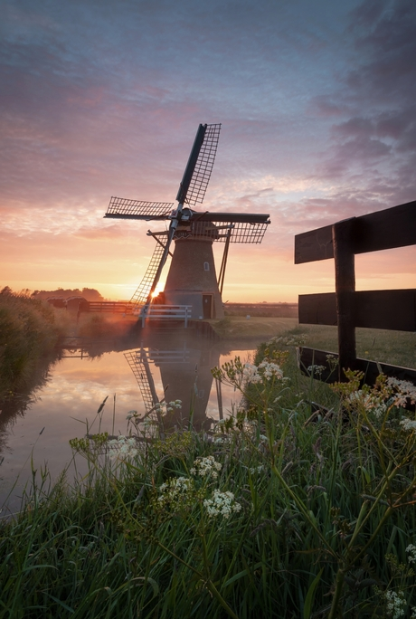 Super Holland