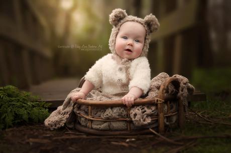 Milou the bear