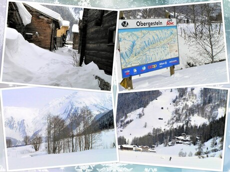 collage langlauff piste Goms Tall Zwiss 21 feb 2005