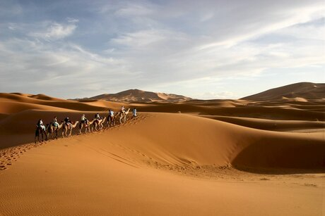 kamelentocht door de Sahara Zuid-Marokko