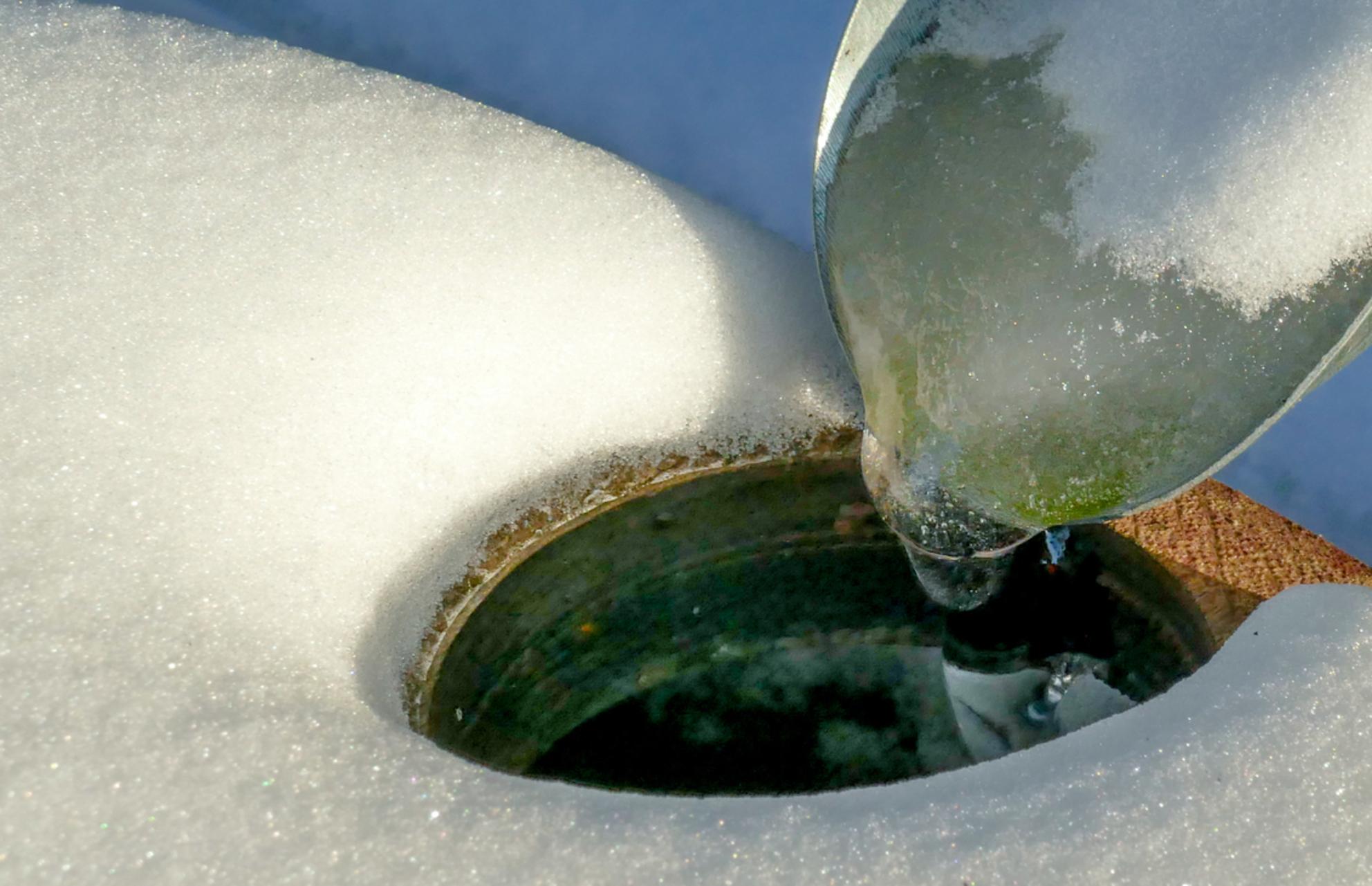 Wak ? - - - foto door HuubZoom op 01-03-2021 - deze foto bevat: winter - Deze foto mag gebruikt worden in een Zoom.nl publicatie