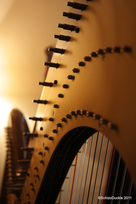 M'n eerste ontmoeting met een harp