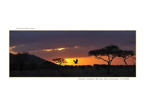 Sundowner Serengeti NP