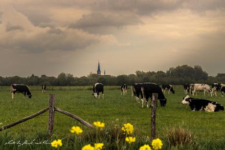 Kerkje van Terheijden vanuit Breda gezien.