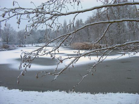 winter, brrrr