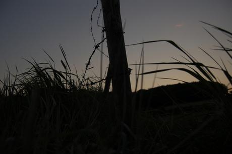 Limburg by night