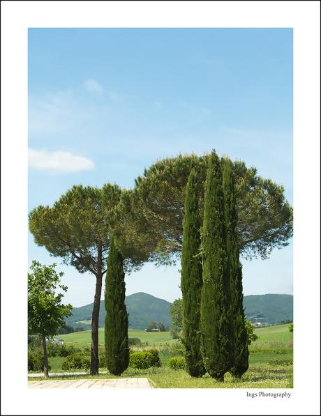Italië 13 - Toscane