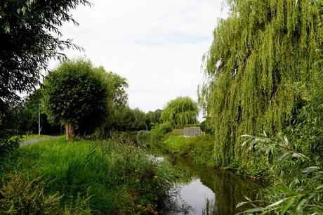 Mandelbeek