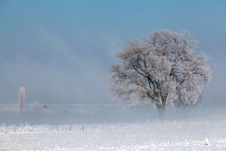 winter in Gewande