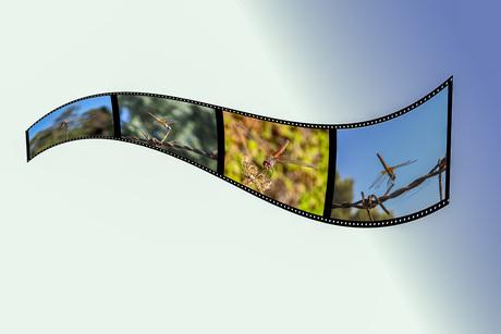 Oefening in photoshop om een filmstrip te maken