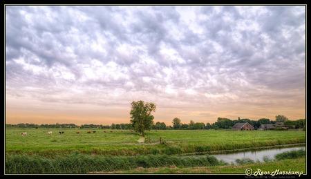 """Agrarisch Landschap Arkel - rietveld - - - foto door rens_marskamp op 19-07-2016 - deze foto bevat: boerderij, koeien, landschap, fuji, gorinchem, rietveld, arkel, agrarisch, giessenlanden, rens marskamp, <img  src=""""/images/smileys/messed.png""""/>ro1"""