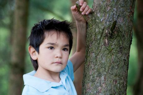 ook in de boom!