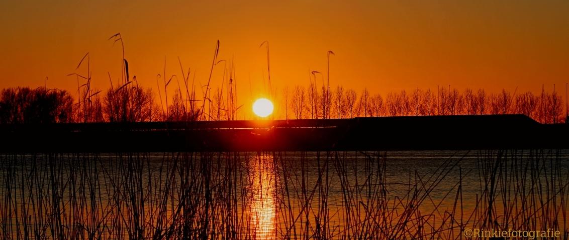 Zonsondergang Abcoudermeer - Zonsondergang Abcoudermeer - foto door RinkieFotografie op 01-03-2021 - deze foto bevat: lucht, zon, natuur, licht, zonsondergang, landschap, tegenlicht, meer, nederland