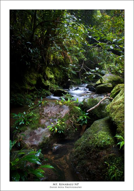Mt. Kinabalu National Park