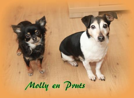 Molly en Pruts
