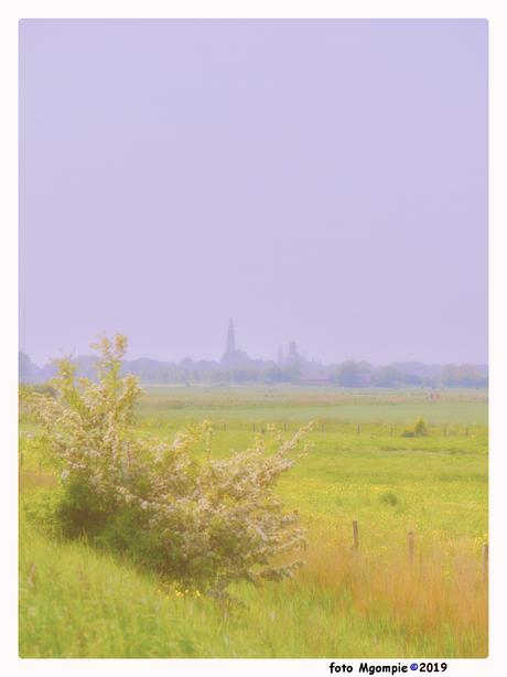 Zwoel Middelburg