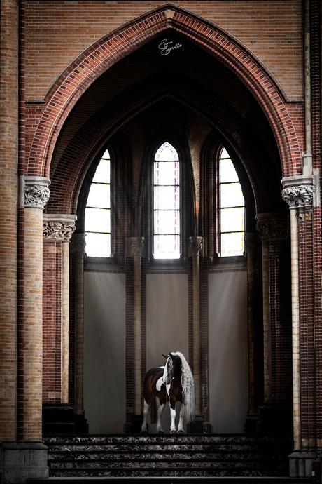 Tinker Uitslover in een prachtige kerk
