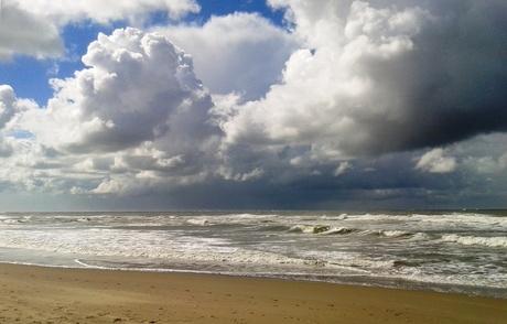 Noordzee Texel