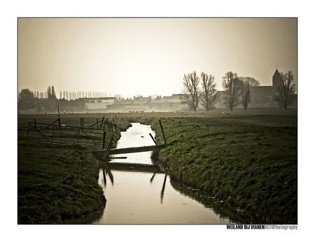 Weiland bij Vianen - - - foto door Octo op 28-03-2008 - deze foto bevat: landschap, weiland, vianen
