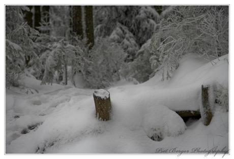 Trapjes naar winterland
