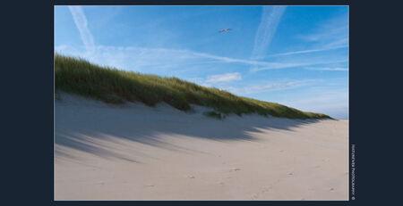 De duinen van Texel - Deze duinenrij liet met een vroege zon een mooie schaduwwerking zien. Te mooi om door te lopen. - foto door keeseos op 09-07-2009 - deze foto bevat: strand, schaduw, duinen, texel, zand, keeseos, duinenrij