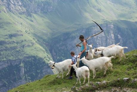 peter : Appenzell