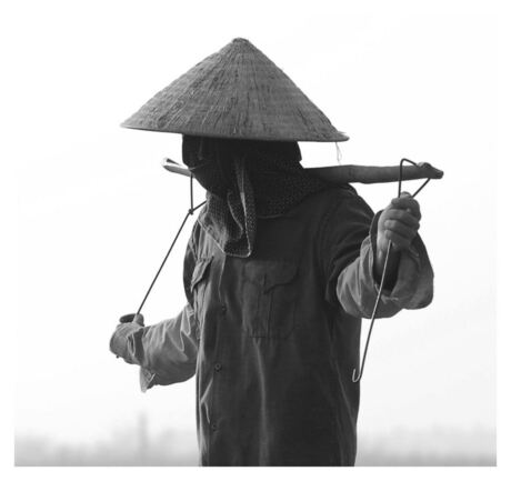 Vietnam, boer op land