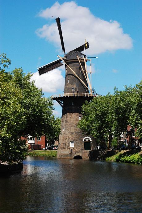 molendag in Schiedam
