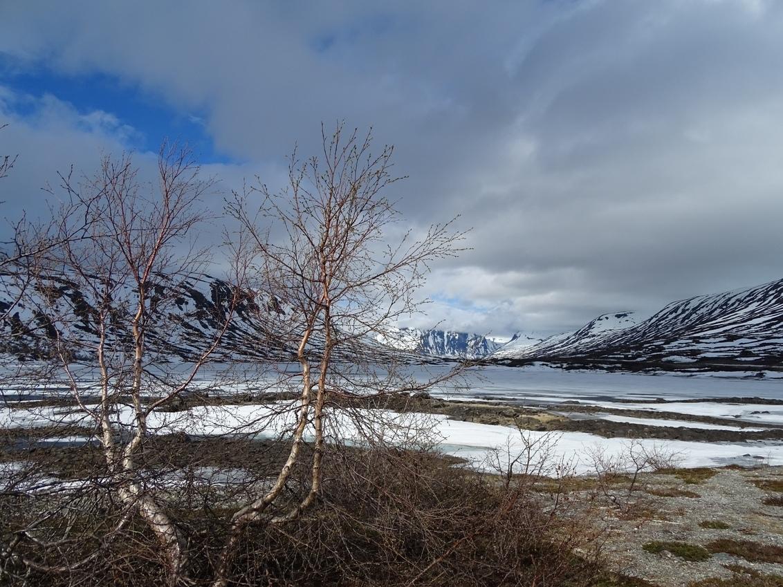 7F5AEAD6-8634-44E8-B0C8-22977E7B413A - Mooi uitzicht in Noorwegen. - foto door Peertjesmoes op 02-03-2021 - deze foto bevat: landschap