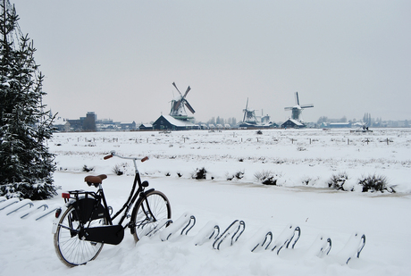 Winters Holland