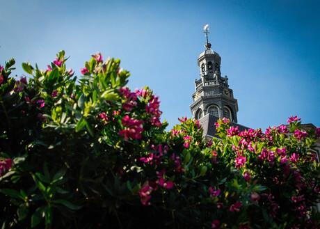 Stadhuistoren in de bloemetjes