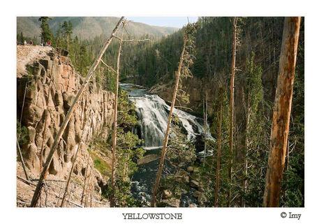 Yellowstone V
