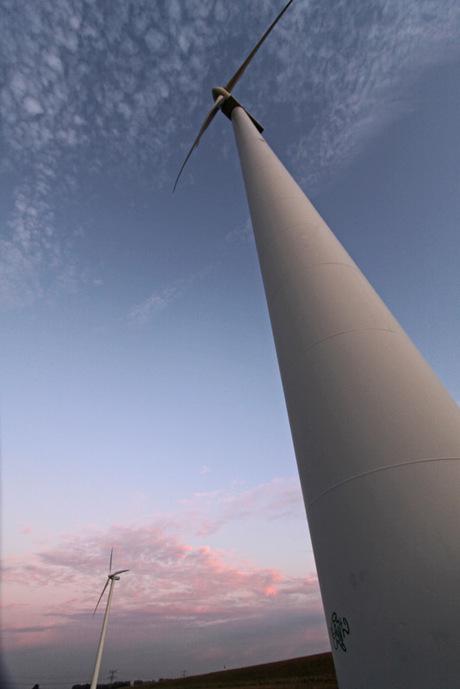 Windmolens aan de Schelde