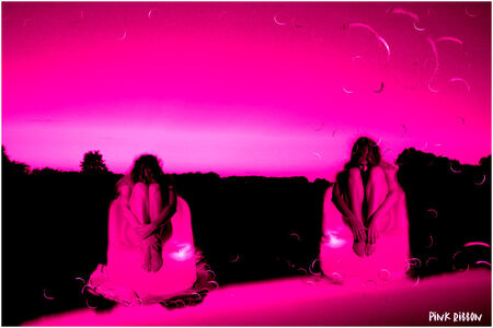 pink ribbon 2 - vandaag is het de laatste oktober dag en dus de laatse dag van de maand waarin we extra aandacht vragen voor de mensen die met borstkanker te maken h - foto door WildIsh op 31-10-2008 - deze foto bevat: pink, bewerkt, ribbon, wildish, -, pink-ribbon