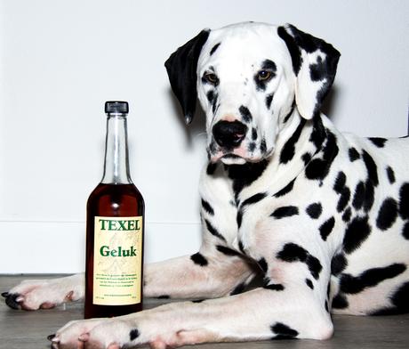 Kleine Alcoholist.