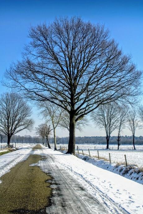 Winter in het Zuiden