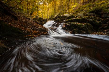 Herfst in de Hoge Venen