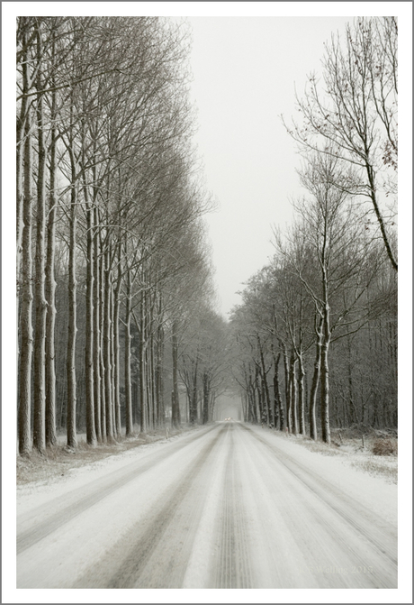 a touch of winter (2)