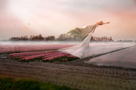 Bevrijd de Tulpen