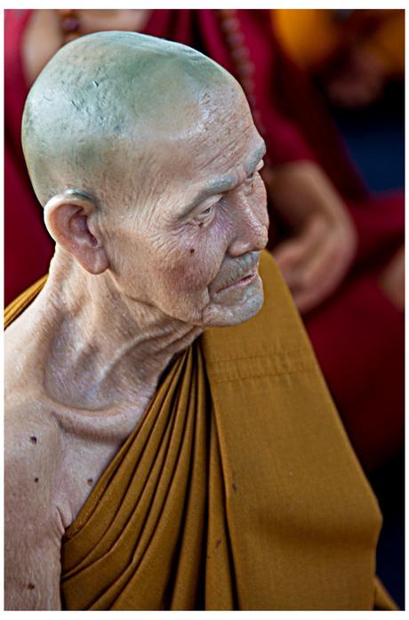 My little monk