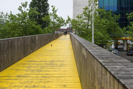 Rotterdam in het geel 4