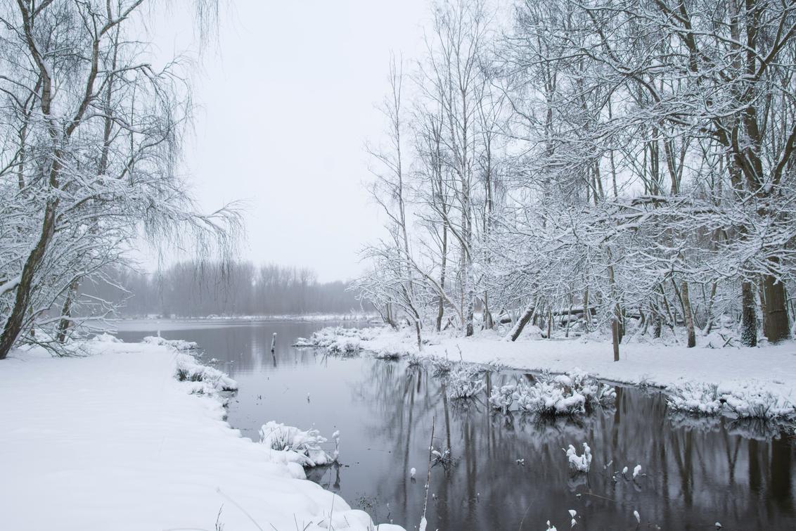 """Snowworld! - Inmiddels hebben we een week """"zomer""""gehad, des te mooier terugkijken op de sneeuw.  Bedankt voor de reacties op mijn vorige ups. Grt Ed - foto door eddykievit op 27-02-2021 - deze foto bevat: lucht, water, vlaardingen, natuur, licht, sneeuw, winter, ijs, spiegeling, landschap, bos, bomen, meer, polder, broekpolder, lineward, eddy kievit"""