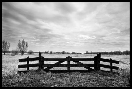 Achter het hek (in B&W)