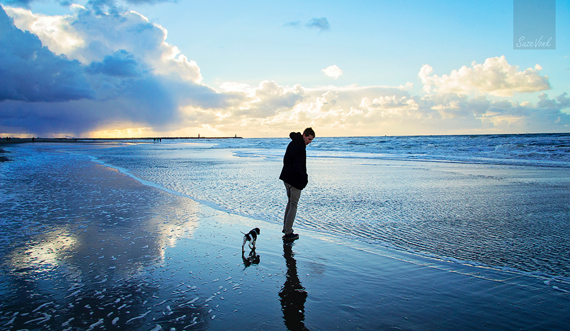 Voor het eerst op het strand - Onze 10 weken oude puppy die voor het eerst kennis maakt met de zee. - foto door SuzeVonk op 15-11-2013 - deze foto bevat: wolken, blauw, strand, zee, wind, zonsondergang, hond, puppy, groothoek, heidewachtel