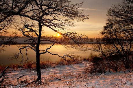 Winter aan de Maas