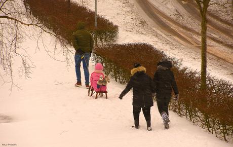 0870 Winter wandeling.