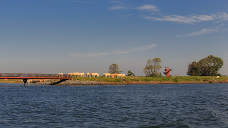 Natuur en Recreatie - Natuur en Recreatie - foto door klaasboonstra op 09-09-2015 - deze foto bevat: lucht, wolken, dijk, natuur, boot, landschap, bomen, rivier, polder