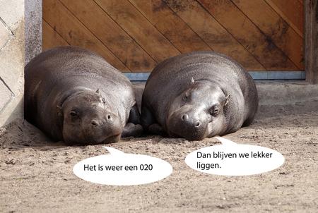 conversatie - hierbij het bewijs dat wij Amsterdammers niet gewaardeerd worden in 010. gr. Nel - foto door Nel Hoetmer op 15-04-2016 - deze foto bevat: blijdorp, nel